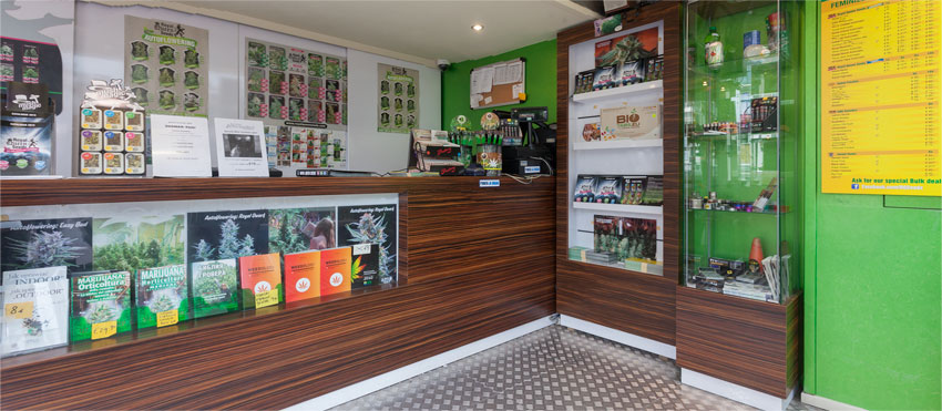 Royal Queen Seeds Store